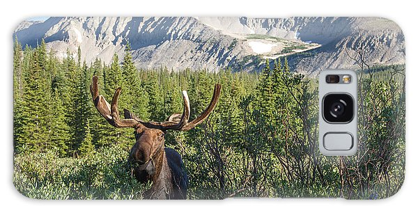 Mountain Moose Galaxy Case