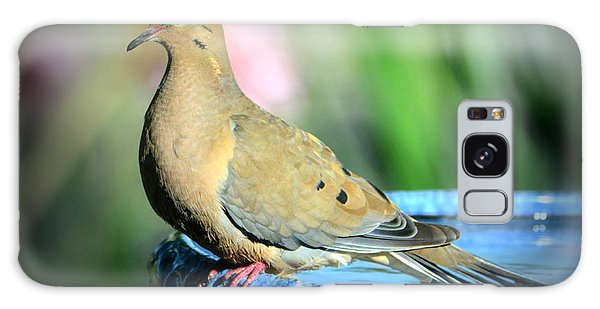 Mourning Dove Perched Galaxy Case