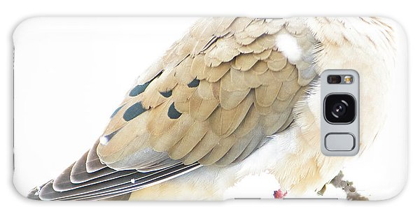 Mourning Dove, Snowy Morning Galaxy Case