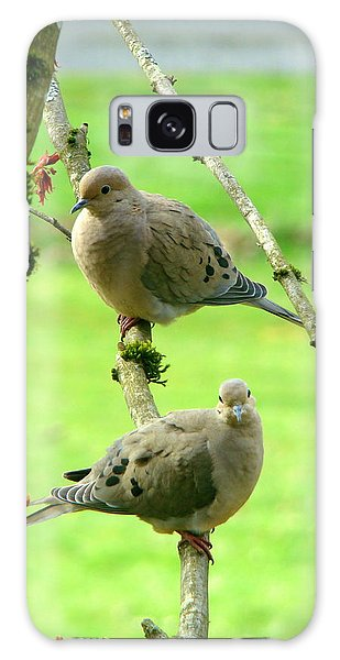 Mourning Doves Galaxy Case