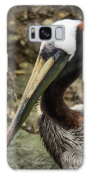 Mr. Cool Wildlife Art By Kaylyn Franks Galaxy Case