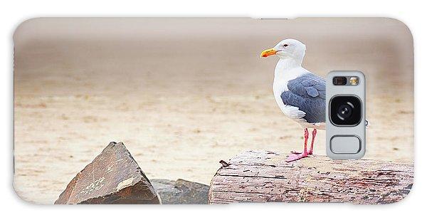 Mr. Seagull Galaxy Case