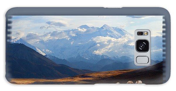 Mt. Denali National Park Galaxy Case