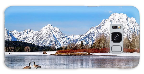Mt Moran With Geese Galaxy Case