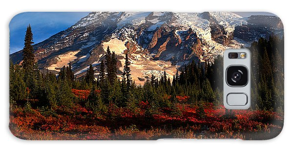 Mt. Rainier Paradise Morning Galaxy Case