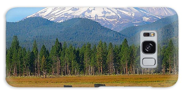 Mt. Shasta Morning Galaxy Case