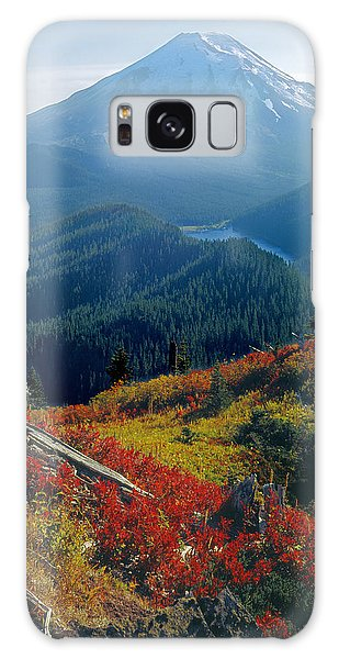1m4903-mt. St. Helens 1975  Galaxy Case