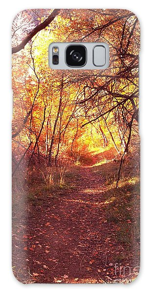 Mueller Park In The Fall Galaxy Case