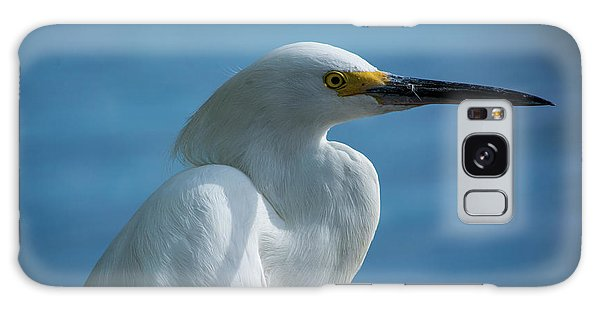 Egret Galaxy Case - Mug Shot by Quinn Sedam