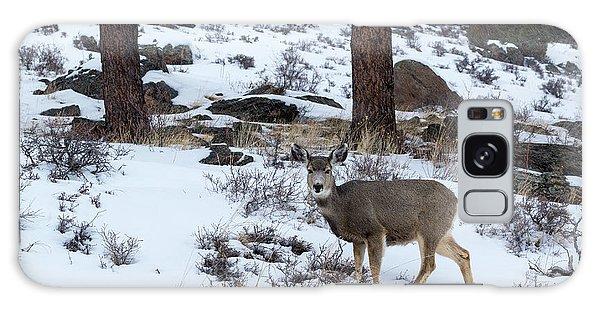 Mule Deer - 8922 Galaxy Case