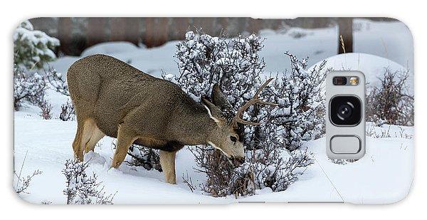 Mule Deer - 9130 Galaxy Case