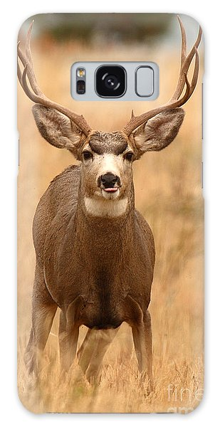 Mule Deer Buck Showing His Thoughts Galaxy Case by Max Allen