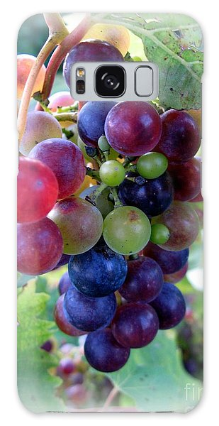 Multicolor Grapes Galaxy Case by Carol Sweetwood