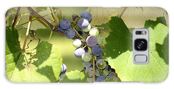 Muscadine Grapes Galaxy Case