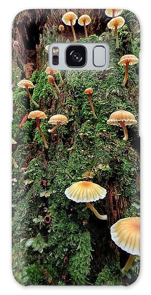 Mushroom Colony Galaxy Case