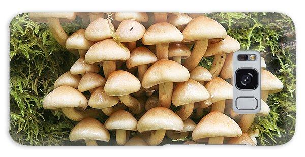 Mushroom Condo Galaxy Case