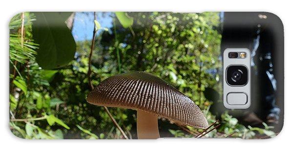 Mushroom Galaxy Case