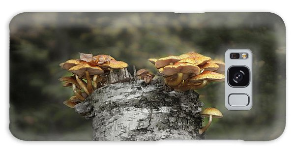 Mushrooms Atop Birch Galaxy Case