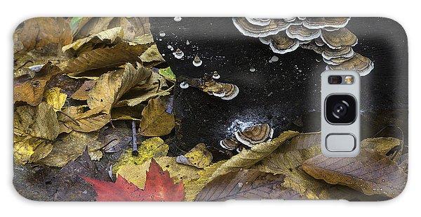 Mushrooms Galaxy Case