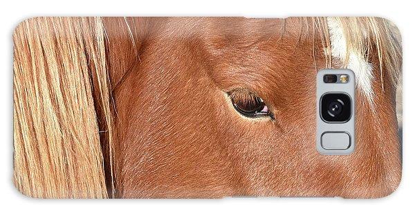 Mustang Macro Galaxy Case