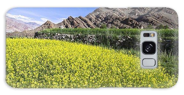 Mustard Field, Hemis, 2007 Galaxy Case