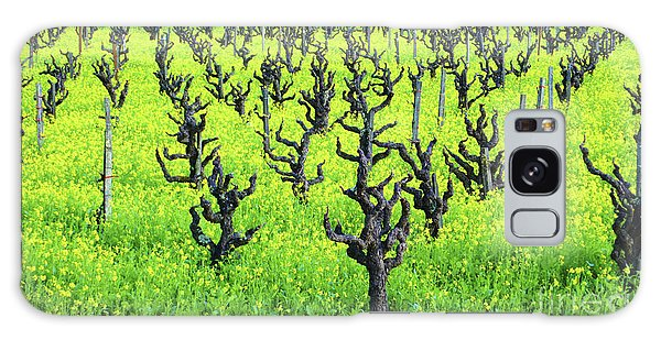 Mustard Flowers In The Vineyards Galaxy Case