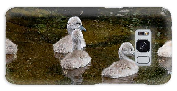 Mute Swan Babes Galaxy Case