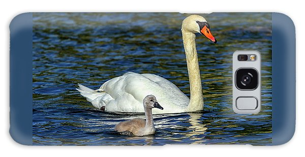 Mute Swan, Cygnus Olor, Mother And Baby Galaxy Case by Elenarts - Elena Duvernay photo