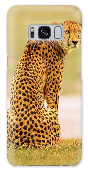 My Cheetah Galaxy Case