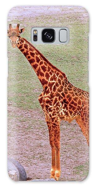 My Giraffe Galaxy Case