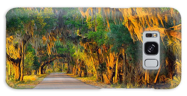 Myakka Canopy Road At Sunset Galaxy Case