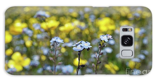 Myosotis With Yellow Flowers Galaxy Case