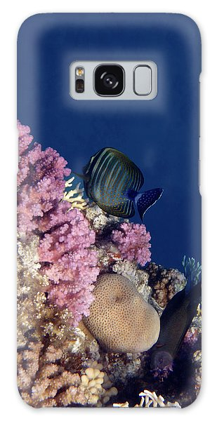 Mysterious Red Sea World 10 Galaxy Case