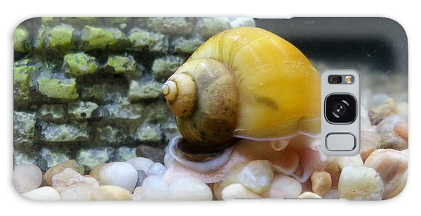 Mystery Snail Galaxy Case