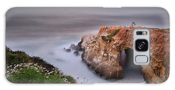Seagull Galaxy Case - Mystical Cave by Larry Marshall