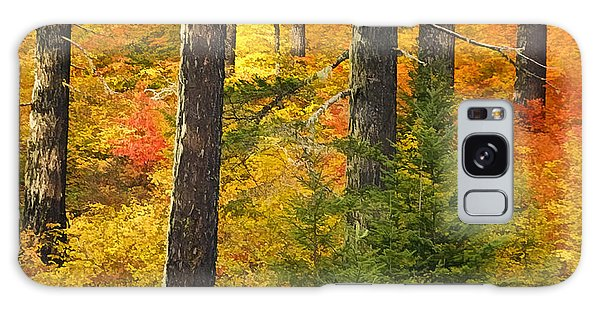 N W Autumn Galaxy Case by Wes and Dotty Weber