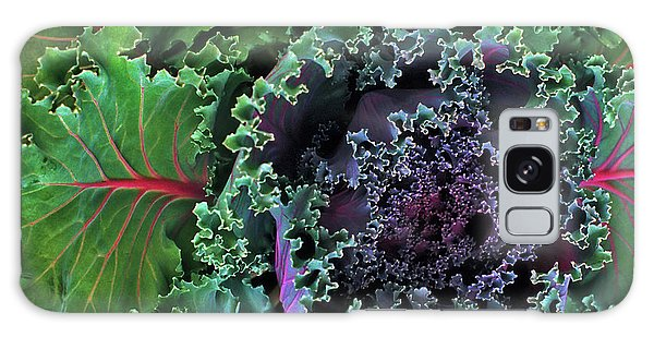 Naples Kale Galaxy Case