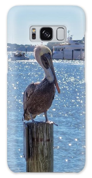 Galaxy Case featuring the photograph Naples Pelican by Lars Lentz