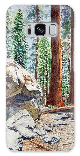 National Park Sequoia Galaxy Case