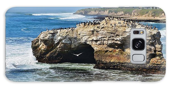 Natural Bridges Santa Cruz Galaxy Case