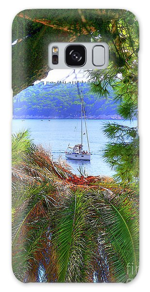 Nature Framed Boat Galaxy Case