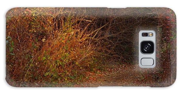 Nature Trail 2 Galaxy Case