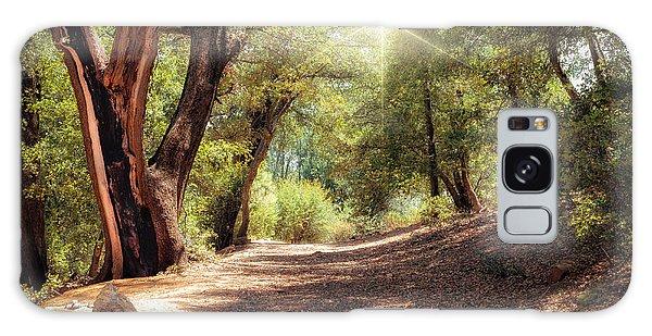 Nature Trail Galaxy Case
