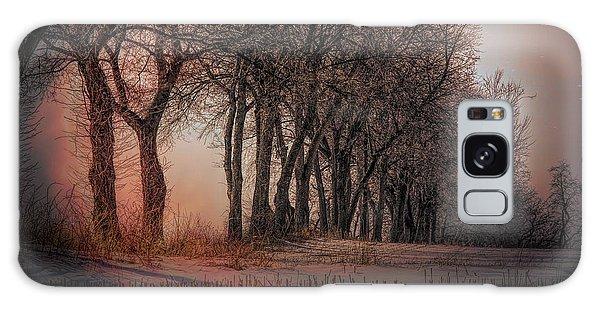 Nature Winter Bare Trees Color  Galaxy Case