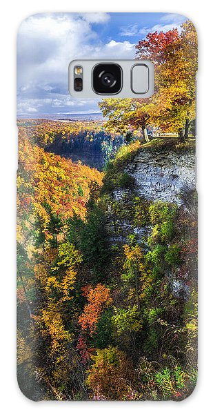 Chasm Galaxy Case - Natures Colors by Mark Papke
