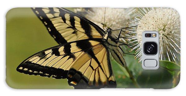 Natures Pin Cushion Galaxy Case