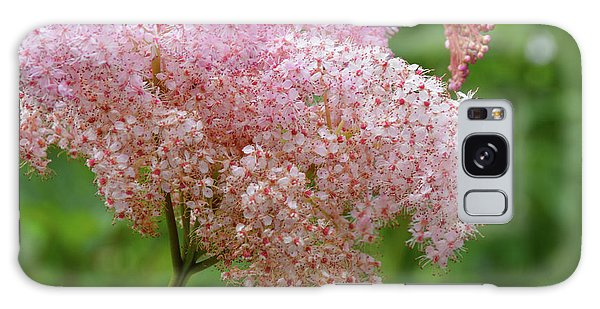 Natures Untouched Beauty Galaxy Case