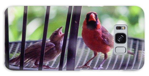 New Baby Cardinal Galaxy Case