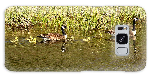 Gosling Galaxy Case - New Chicks In The Family by Adam Jewell