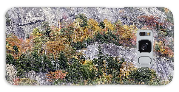 New England Foliage Burst Galaxy Case